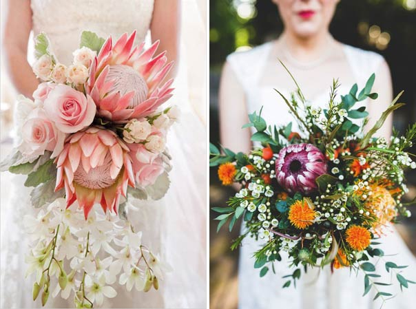 Billy balls sa wedding guide for King protea flower arrangements